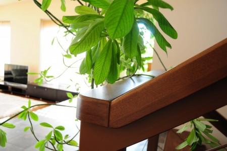 Tamplarie lemn | Usi Interior Exterior Lemn | Ferestre Lemn | Obloane Lemn - mana-curenta01-1000x664