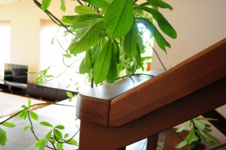 Tamplarie lemn | Usi Interior Exterior Lemn | Ferestre Lemn | Obloane Lemn - mana-curenta01_resize-1000x664